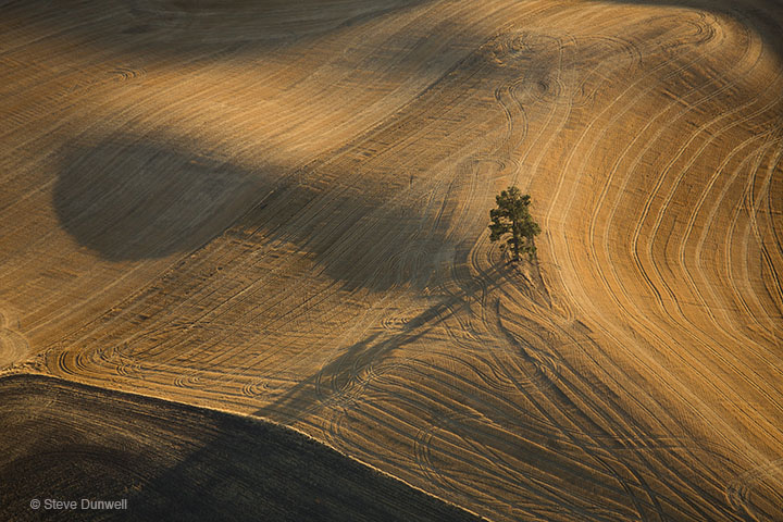 Harvested wheat fields, near Pullman, WA