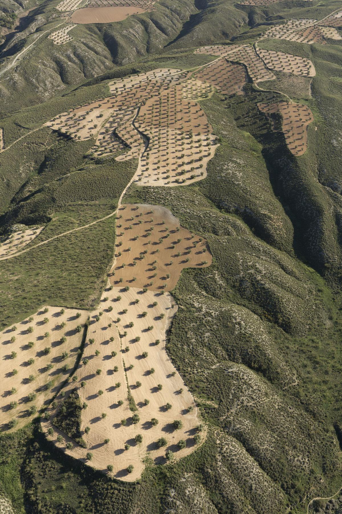 Aerial views farmland, La Mancha, near Algodor and Ocana, Toledo, Spain